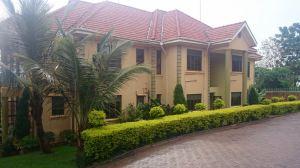 Tumaini Kampala
